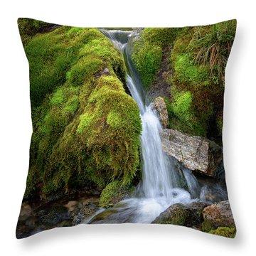 Tufteelvi, Norway Throw Pillow
