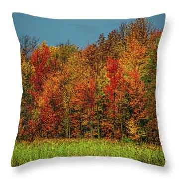 Tug Hill Colors Throw Pillow