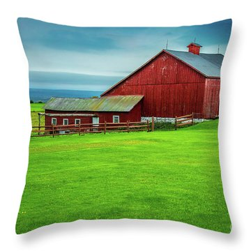 Tug Hill Farm Throw Pillow