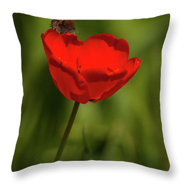 Tulip And Skipper Throw Pillow