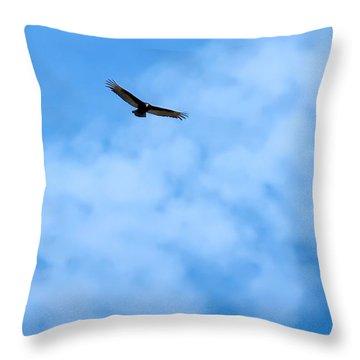 Turkey Vulture In Flight Throw Pillow