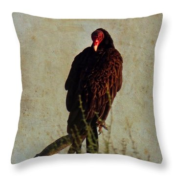 Turkey Vulture Vintage Throw Pillow
