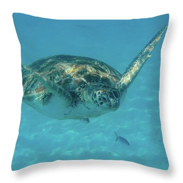 Turtle Approaching Throw Pillow