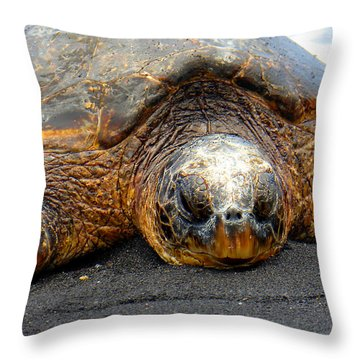 Turtle Rest Stop Throw Pillow