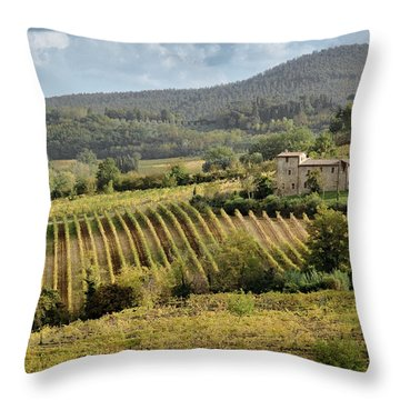 Tuscan Valley Throw Pillow