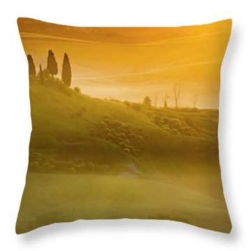Tuscany In Gold Throw Pillow