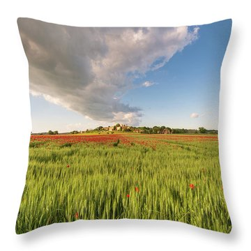 Tuscany Wheat Field Dotted With Red Poppies Throw Pillow