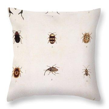 Twelve Beetles Throw Pillow