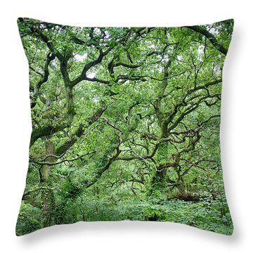Twisted Forest Full Color Throw Pillow