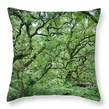 Throw Pillow featuring the photograph Twisted Forest Full Color by Nathan Bush