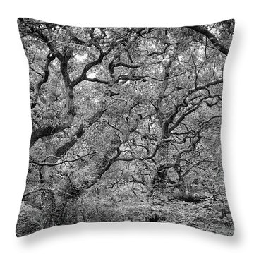 Twisted Forest Throw Pillow