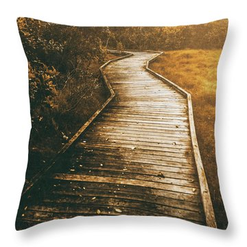 Twisting Trails Throw Pillow