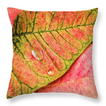 Two Drops Throw Pillow