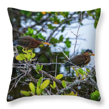 Two Is Better Than One Throw Pillow