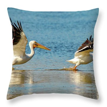 Two Pelicans Taking Off Throw Pillow