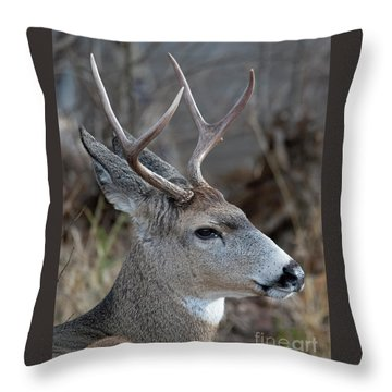 Two-point Profile Throw Pillow