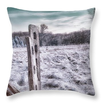 Two Posts Throw Pillow