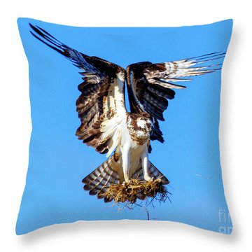 Two  Talons Full Throw Pillow