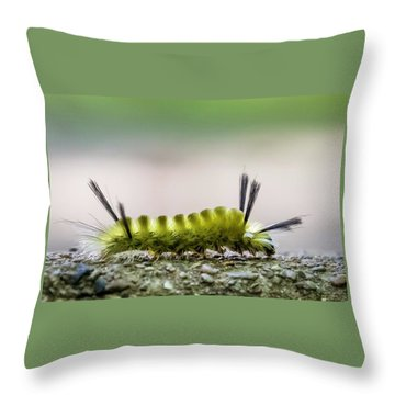 Underfoot Throw Pillow