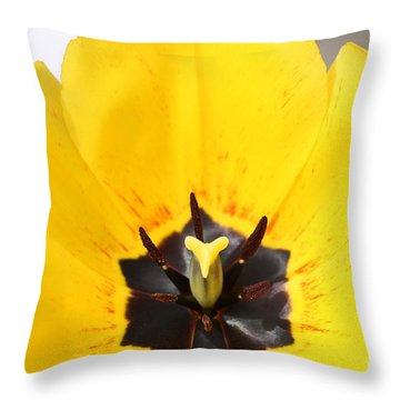 Uplifting Yellow Tulip Throw Pillow