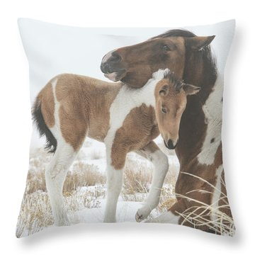 Valentine Filly Throw Pillow