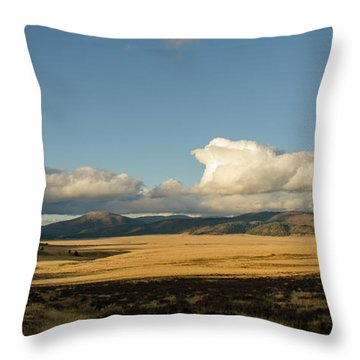 Valles Caldera National Preserve II Throw Pillow