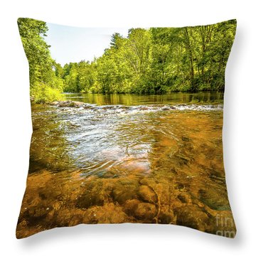 Vans Pool On The Farmington Throw Pillow