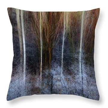 Throw Pillow featuring the photograph Veins Of Forest by Awais Yaqub
