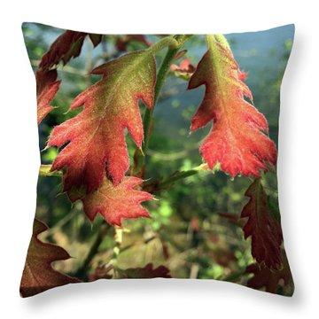Velvet New Oak Leaves Throw Pillow