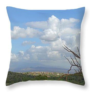 Throw Pillow featuring the photograph Verdant Valley 3 by Lynda Lehmann