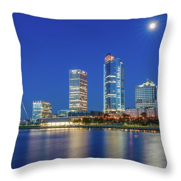 Veterans Park Dawn Throw Pillow
