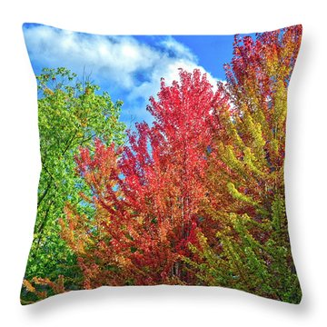 Throw Pillow featuring the photograph Vibrant Autumn Hues At Cornell University - Ithaca, New York by Lynn Bauer