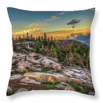 View From Dolly Sods 4714 Throw Pillow