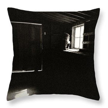 Throw Pillow featuring the photograph View Through A Dirty Window by Carl Young