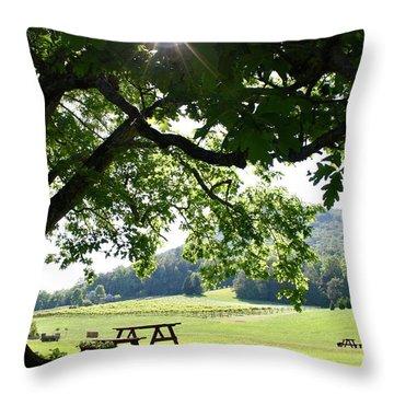 Vineyard In Georgia Throw Pillow