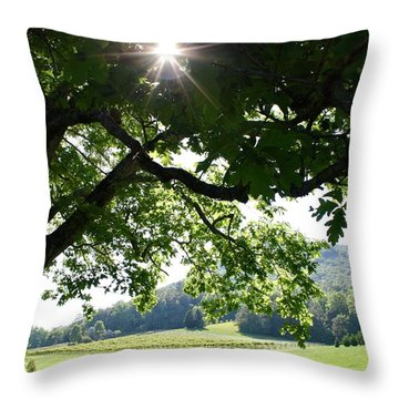 Vineyard In Georgia Throw Pillow