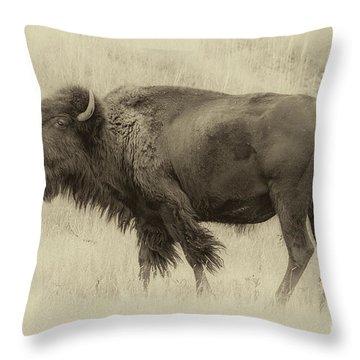 Vintage Bison I Throw Pillow
