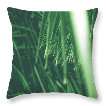 Vintage Palms Iv Throw Pillow