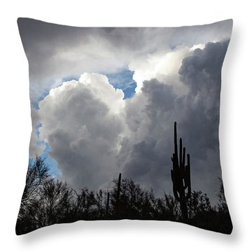 Visions Beyond Throw Pillow