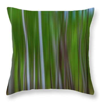 Visions Of Summer Throw Pillow