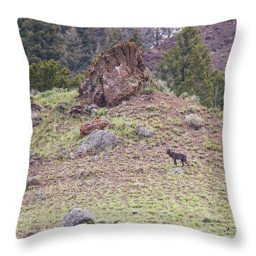 W21 Throw Pillow