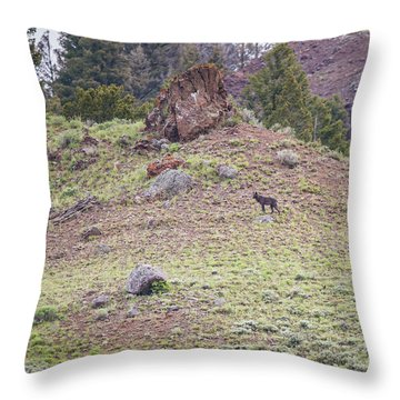 W22 Throw Pillow