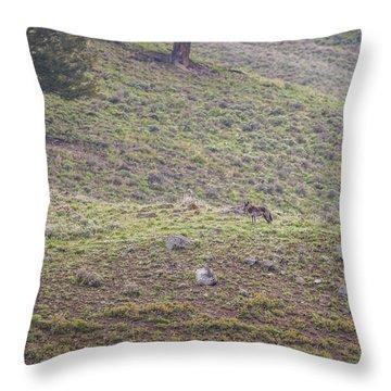 W25 Throw Pillow