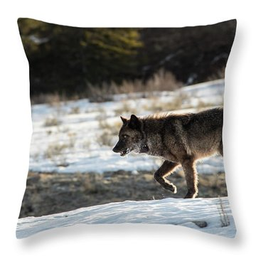 W27 Throw Pillow