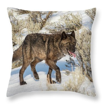W28 Throw Pillow