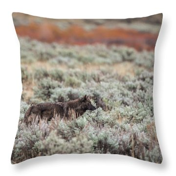 W30 Throw Pillow