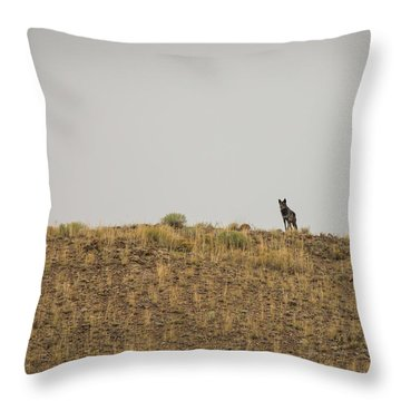 W31 Throw Pillow