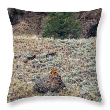 W32 Throw Pillow