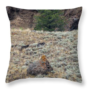W32 Throw Pillow