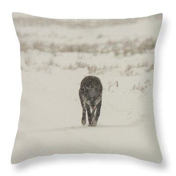 W33 Throw Pillow